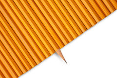One sharp pencil Royalty Free Stock Photography