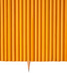 One sharp pencil Stock Images