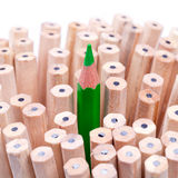 One sharpened green pencil among many ones Stock Photography