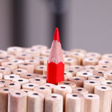 One sharpened red pencil among many ones
