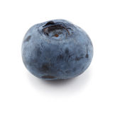One single blueberry against a white background Stock Photo