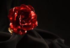 One single rose Stock Photos