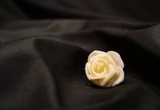 One single rose Stock Photography