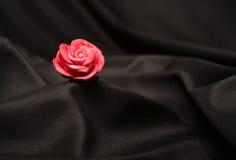 One single rose Royalty Free Stock Image