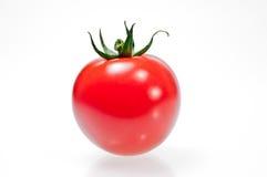 One single tomato isolated on white background Stock Images