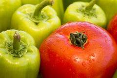 One single wet tomato and many green bell pepper with water drops Stock Images