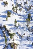 Squaw Valley. One of the slopes at Squaw Valley, California, for those who like extreme skiing between rocks and trees Royalty Free Stock Photos