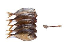One small fish against a big fishes. Smoked big fish Vomero and one small fish isolated on  white background Stock Photography