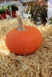 One small pumpkin on bale of hay Stock Photos