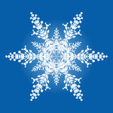One Snowflake On Blue Background Stock Photography
