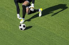 One soccer player goalkeeper man throwing ball green gr royalty free stock photo