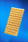 One solty cracker Stock Images