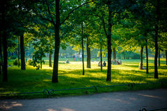 One sommer sunny day in the park Royalty Free Stock Photography