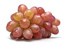 One sort of grapes freshly washed Stock Image