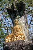 One of the statues of Buddha in Luang Prabang Royalty Free Stock Photography