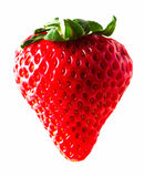 One strawberry Royalty Free Stock Image