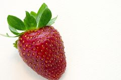 One strawberry. Close-up of One strawberry over white background Stock Photos