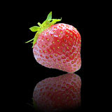 One strawberry on black Stock Photo