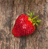 One strawberry Stock Images