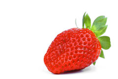 One strawberry Stock Photos
