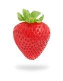 One strawberry on white background Royalty Free Stock Photo