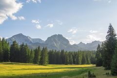 One sunny day in the mountains. Beautiful mountain Durmitor in Montenegro, magnificent with beautiful valleys at the top Stock Photos