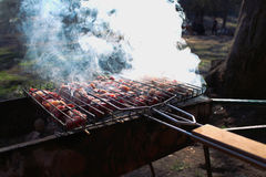 One sunny spring day, the meat is roasted on the grill on mangal. And from it comes a lot of white smoke. Spring BBQ fest stock images