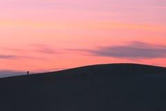 One sunset hiker walking sand dune crest Stock Image
