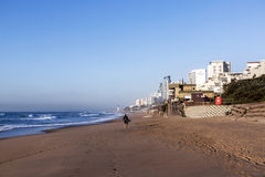 One  Surfer on Early Morning Beach  in Umhlanga Rocks Royalty Free Stock Image