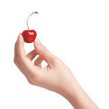 One sweet cherries in a hand. Handful of sweet cherries in a hand Royalty Free Stock Photography