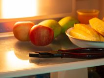 Pliers in the refrigerator. stock photo