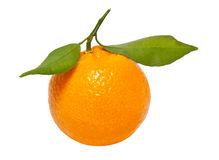 One tangerine. Closeup of a tangerine isolated on a white background stock photos