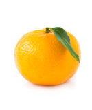One tangerine with leaf Royalty Free Stock Photos