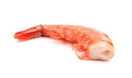 One tasty shrimp. Stock Photos