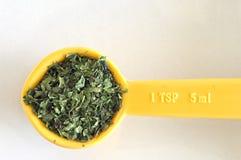 Free One Teaspoon Of Chervil Stock Photo - 8061600