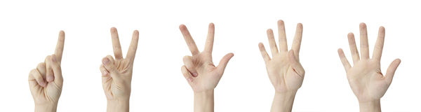 One to five. Counting Hands from one to five on a white background Royalty Free Stock Photo