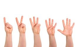 One to five fingers count hand gesture isolated Royalty Free Stock Photography