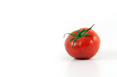 One tomato Royalty Free Stock Images