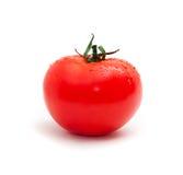 One Tomato Royalty Free Stock Image