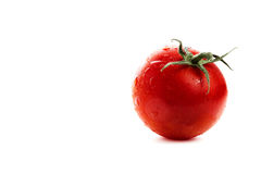 One tomato Royalty Free Stock Photo