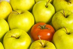 One tomato and apples Royalty Free Stock Images