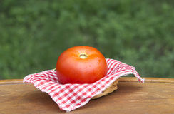 One tomato in basket Royalty Free Stock Photo