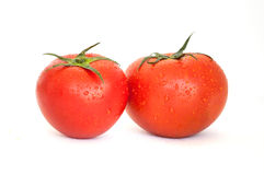 One tomato isolated in white Royalty Free Stock Photo