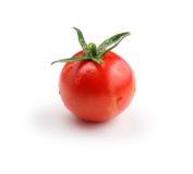 One tomato isolated on white background Stock Images