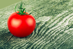 One tomato on old gray cracked wooden table. Background. Tinted. Stock Images