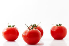 One tomato and three. Tomatoes on white background stock images