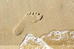 One trace on the brown sand. With water Stock Image