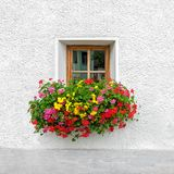 Traditional Austrian window with blooming summer flowers stock images