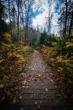 Only for walk. One of the trails in Rawdon, Quebec, Canada stock image