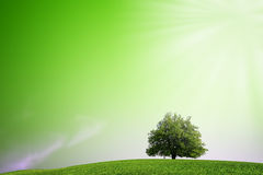 Green Planet banner Stock Image